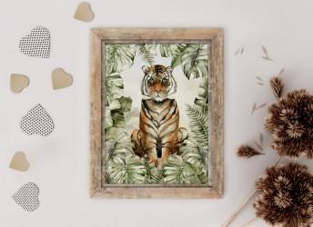 Plakat SAWANNA tygrys