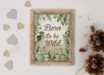 Plakat SAWANNA Born to be Wild